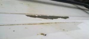 sfaldatura della vernice flaking